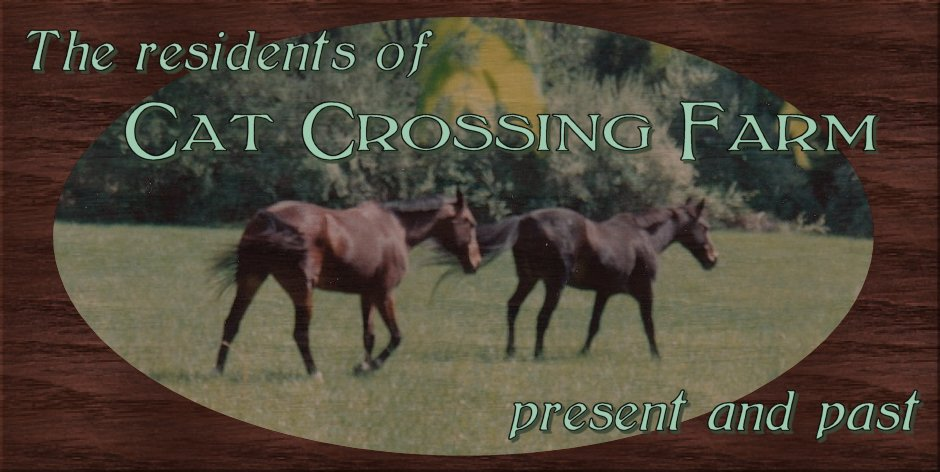 Cat Crossing Farm banner